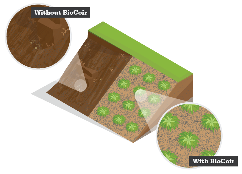 BioCoir - Biodegradable Coconut Fibre Matting - Cirtex Civil