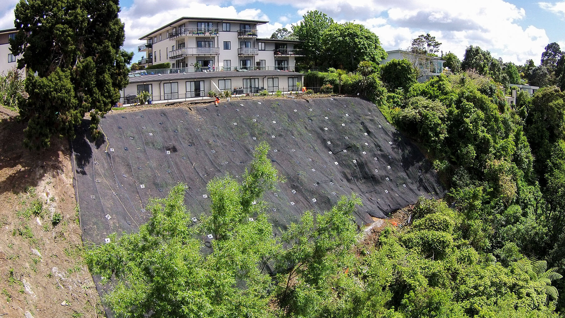 Earth Stability & Cirtex - Pinesong